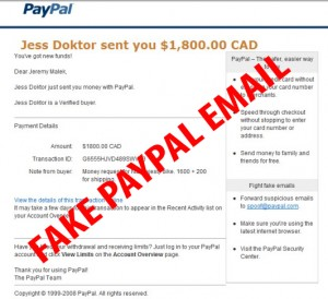 paypalscam copy